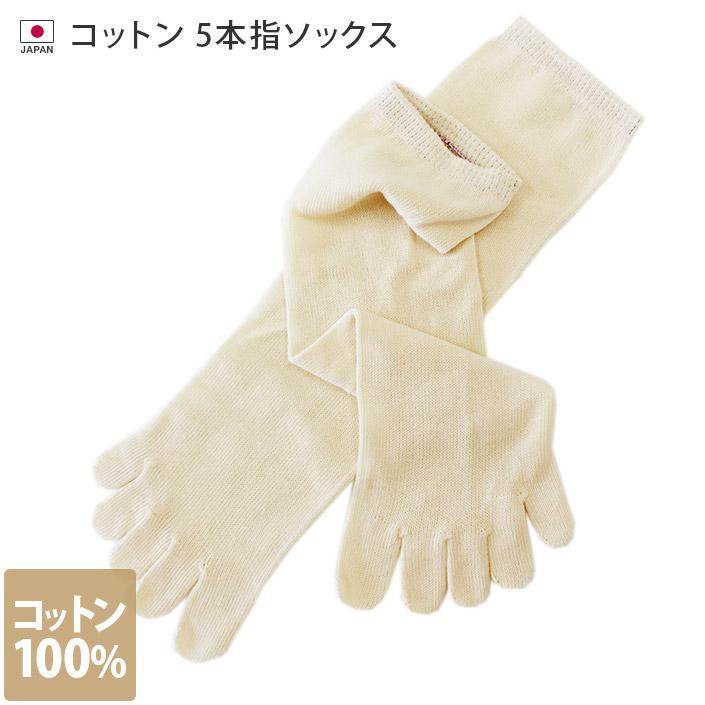 冷えとり靴下 コットン 5本指ソックス (重ね履き専用)
